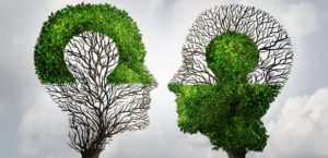 Perfect business partnership as a connecting puzzle shaped as two trees in the form of human heads connecting together to complete each other as a corporate success metaphor for cooperation and agreement as equal partners.